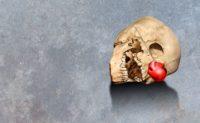 Hamlet-stf