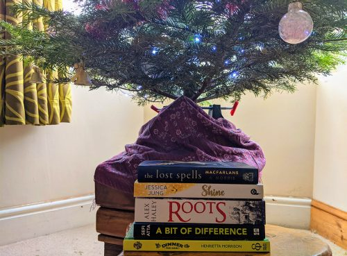 Christmas tree and new books